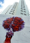 Muro esterno - San Paolo del Brasile 2012