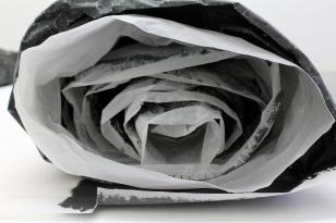divenire, Massimiliano Turco - carta lucida e acrilico, 2016